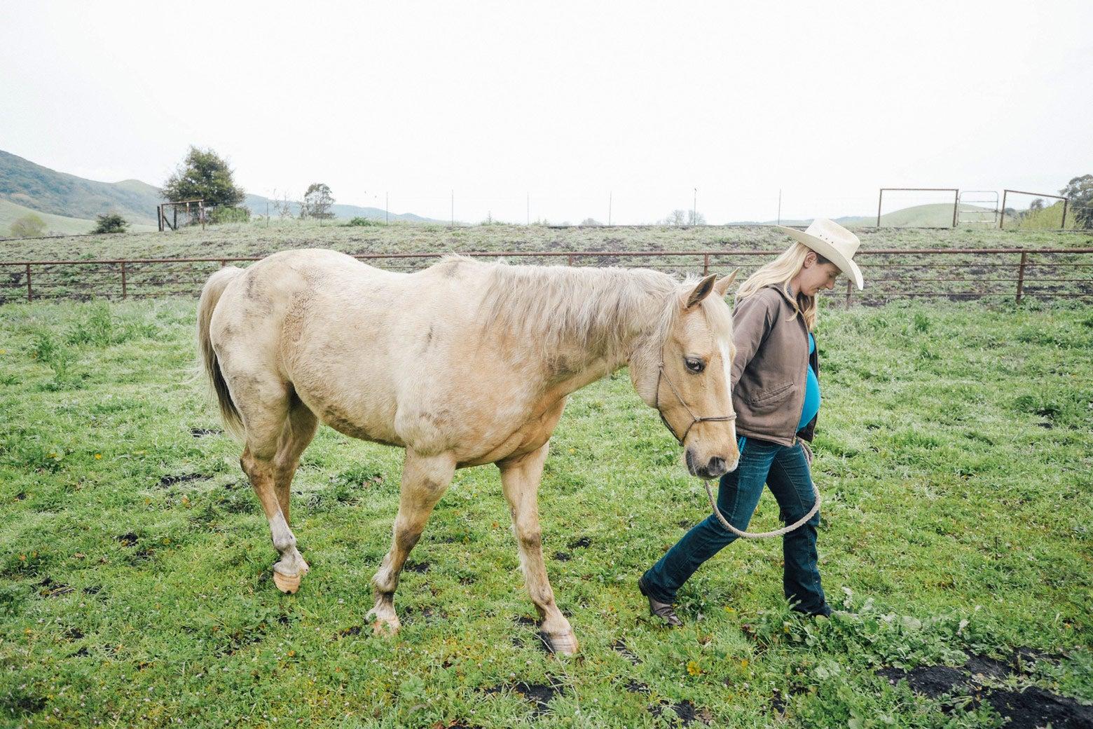 Elizabeth leads a horse through a field.
