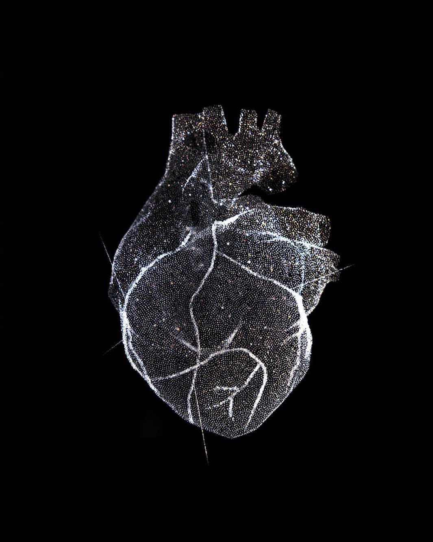 Glass Model of a Heart, 2012.