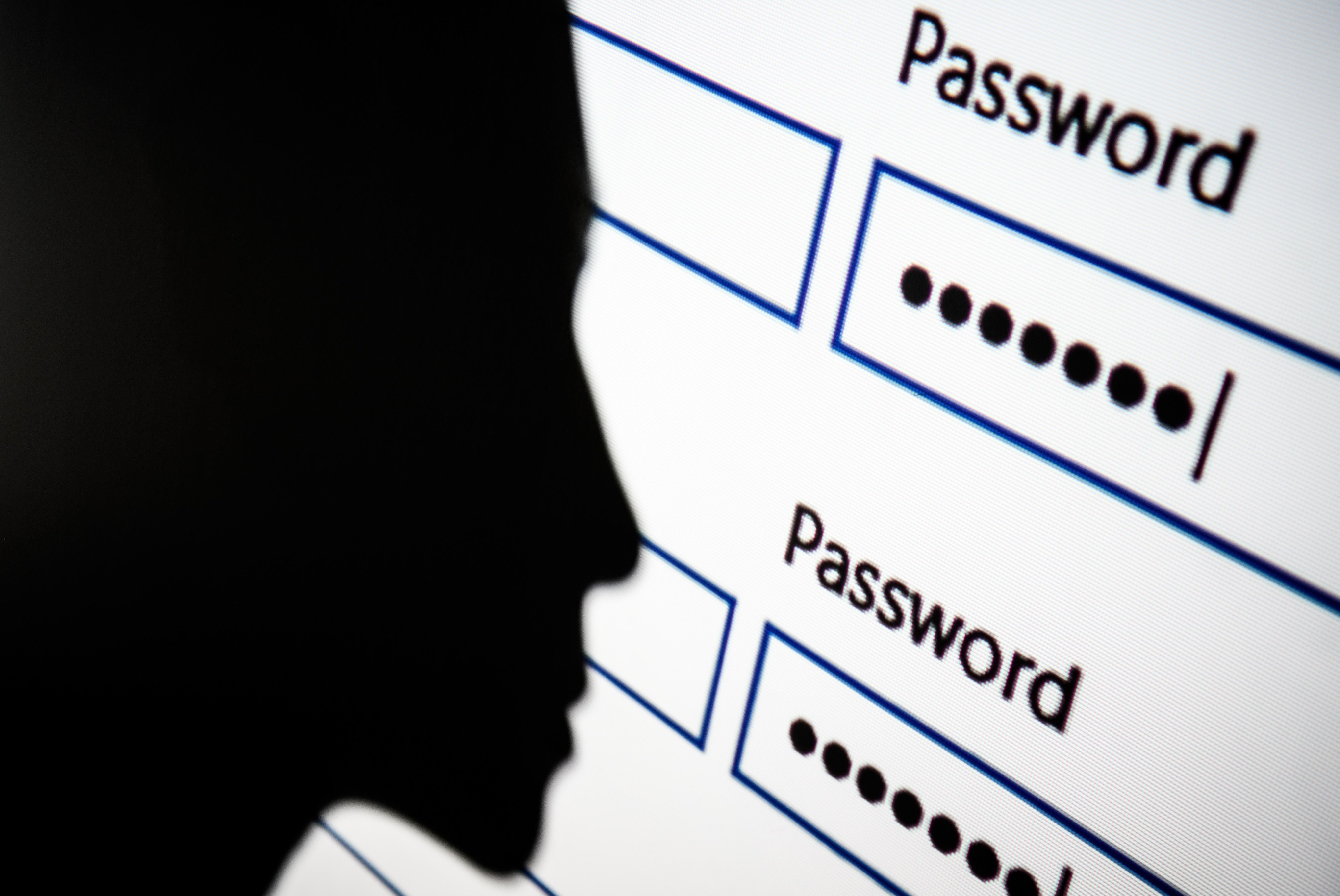 A woman is silhouetted against a projection of a password login page.