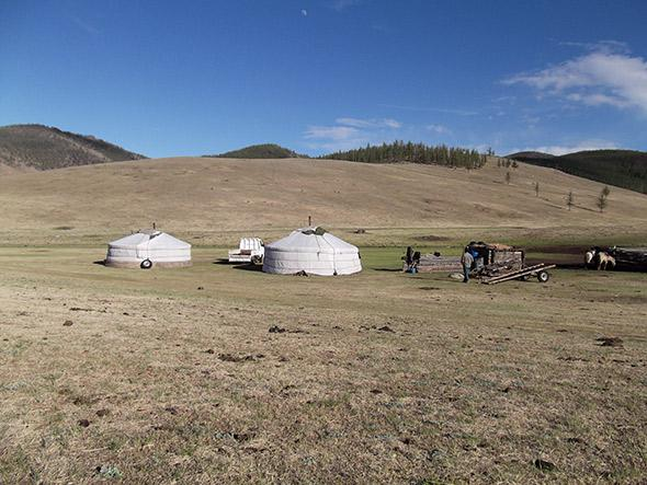 Ger camp Mongolia
