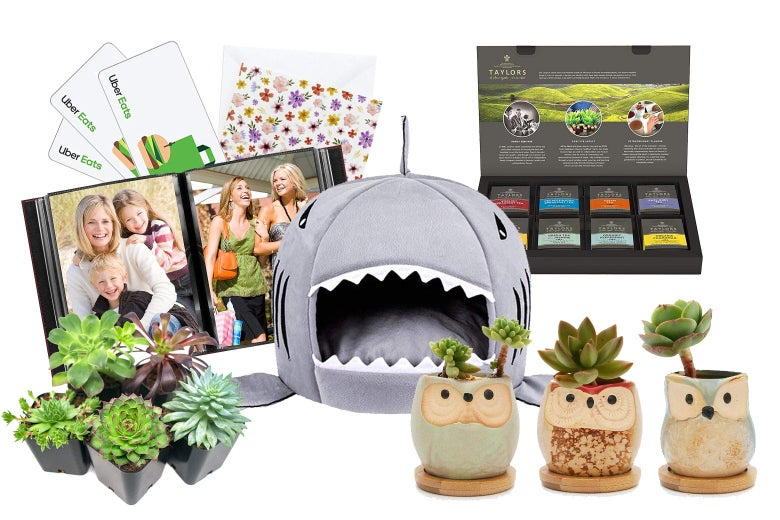 Uber Eats gift cards, greeting cards, photo album, shark cat bed, tea variety box, succulents in planters.