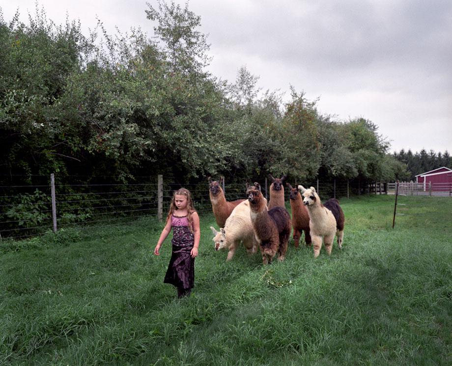 Llamas Follow