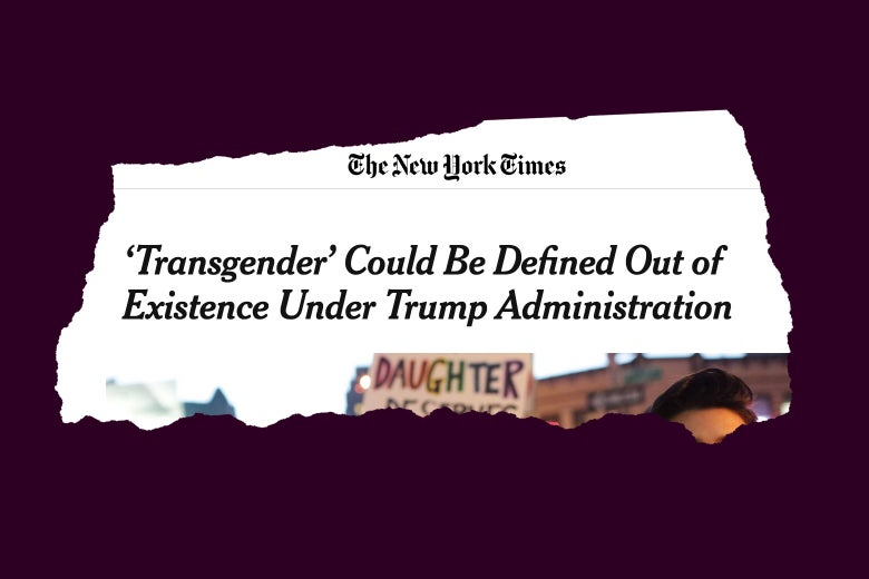 Screengrab of the New Yorks Times' article on Transgenders in the Trump era.