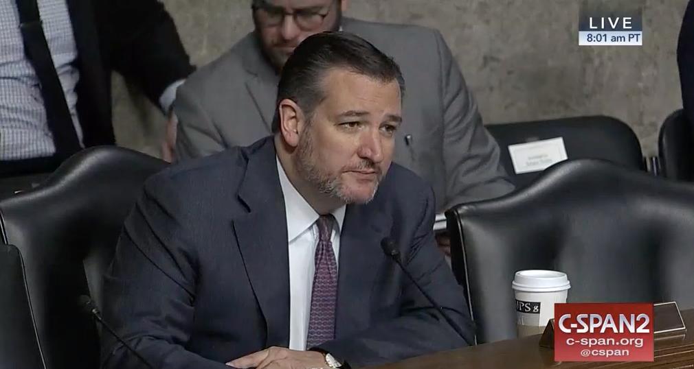 Ted Cruz, with a beard, sits at a Senate hearing.