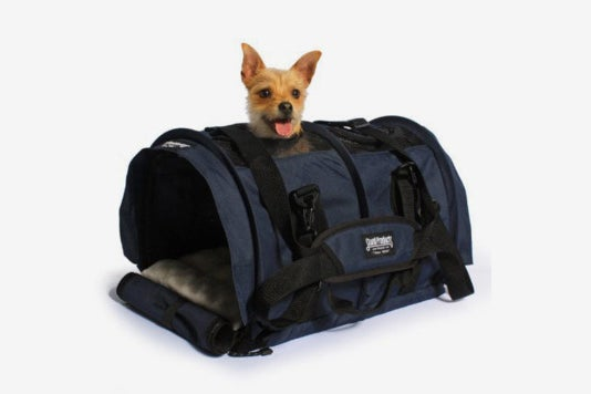 Small dog in the SturdiBag Large Flexible Height Pet Carrier.