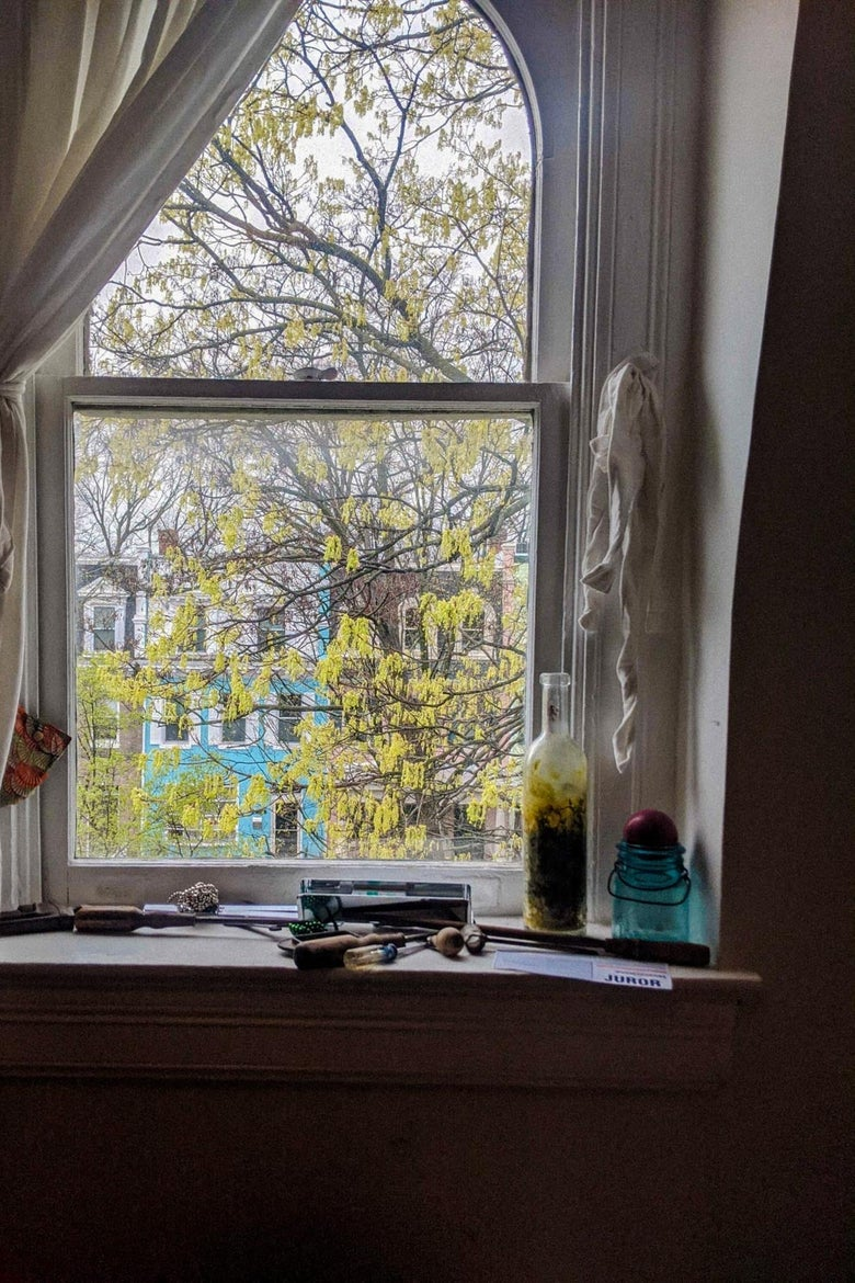 A window with white curtains in a dark room looks out onto a tree.