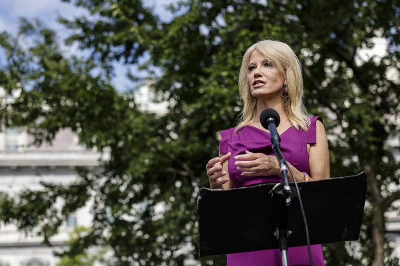 Kellyanne Conway speaks at a mic outside the White House