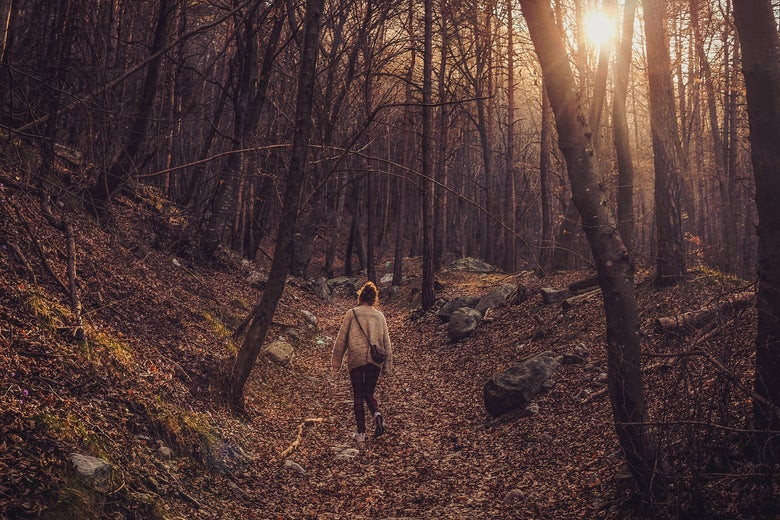A woman in the woods.