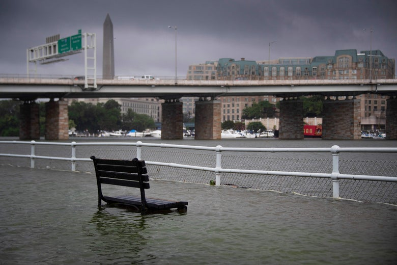 Waters nearly cover a park bench along the river near a bridge in Washington
