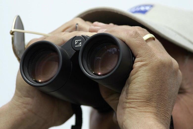A birder uses binoculars
