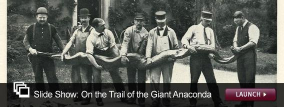 Click here to launch a slide show on the search for giant anacondas.