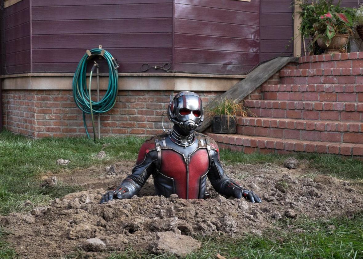 Paul Rudd in Ant-Man.