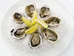 Oysters on ice.
