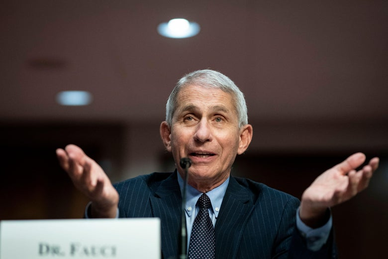 Fauci gestures while speaking at a mic