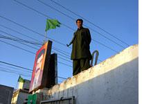 A bodyguard assigned to protect PML candidates. Click image to expand.