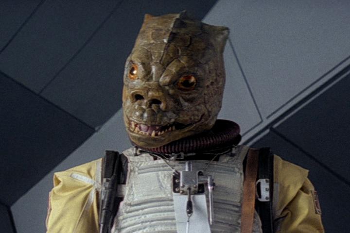 A lizard-headed man.