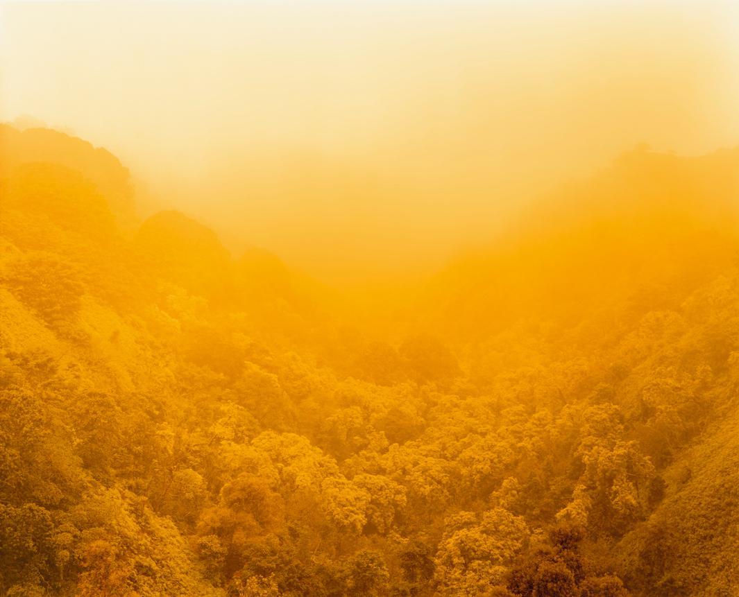 Climate Vortex Sutra, (For Allen Ginsberg), Hana, Hawaii, 2014