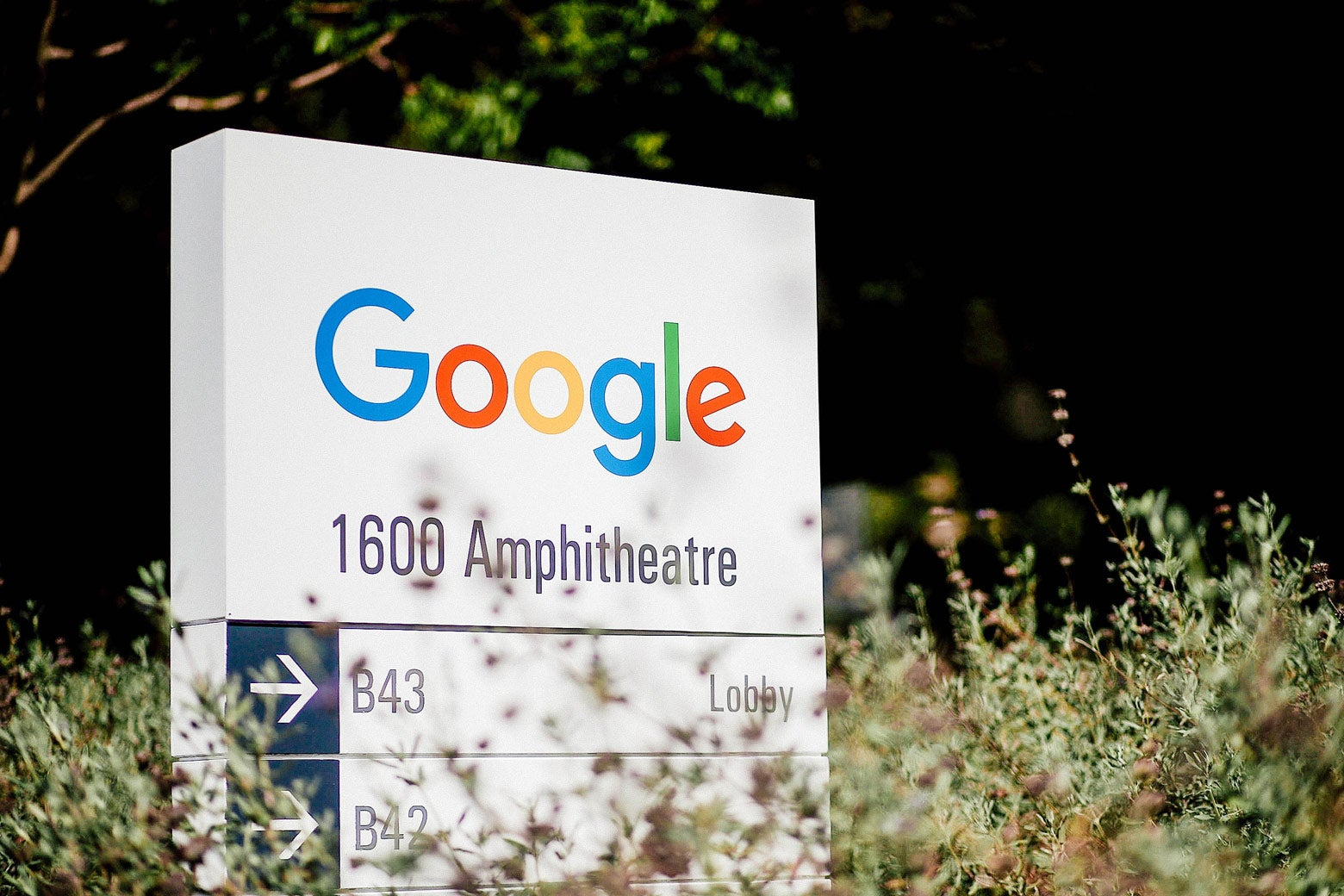 Google logo is displayed on a sign.