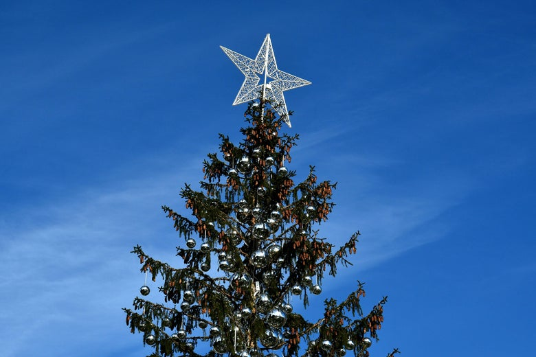 A picture shows the controversial Christmas tree at Piazza Venezia in Rome, on December 19, 2017. For the second year in a row the Christmas tree has backfired on the city's mayor Virginia Raggi of the anti-establishment Five Star mouvement (M5S). This year the tree was a gift from Val di Fiemme in the Trentino region of northern Italy but unfortunetly the municipality admited the tree has dried before Christmas day. / AFP PHOTO / Alberto PIZZOLI        (Photo credit should read ALBERTO PIZZOLI/AFP/Getty Images)