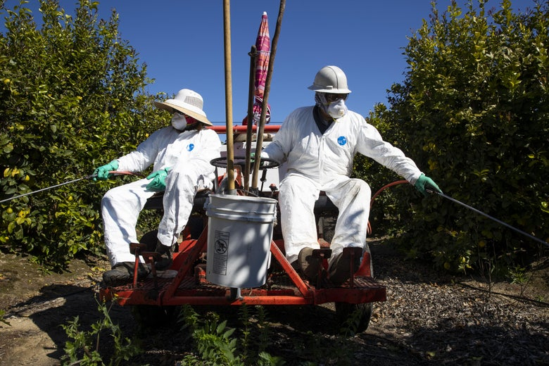 Workers wearing suits and masks sit in a cart with tools and spray orchards.