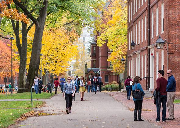 Harvard.