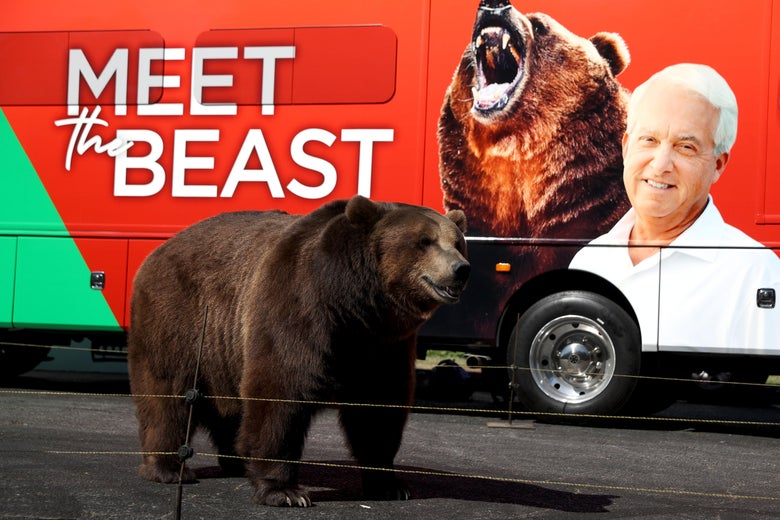 A 1,000 pound bear stands in front of the campaign bus for California republican gubernatorial candidate John Cox during a campaign rally at Miller Regional Park on May 04, 2021 in Sacramento, California. Republican candidate for California governor John Cox kicked off his campaign with a press event that featured a live 1,000 pound bear.