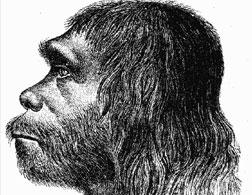 First reconstruction of Neanderthal man. Click image to expand.