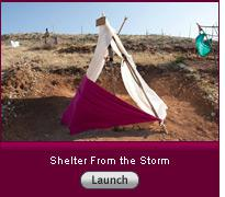 "Click here to launch the slideshow ""Shelter From the Storm"""