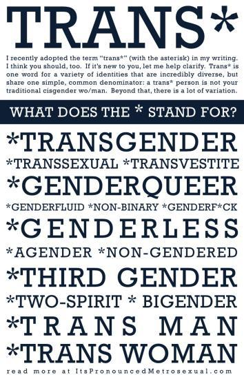 Poster created by online LGBTQ educator Sam Killerman.