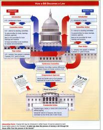 A graphic image of how a bill becomes a law