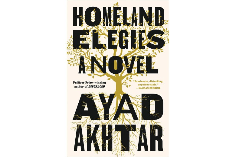 The cover of Homeland Elegies.
