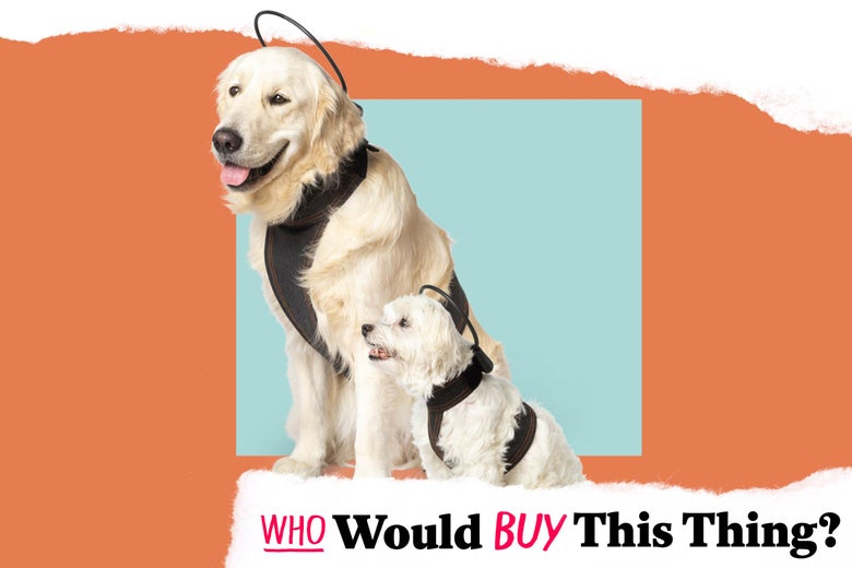 Two dogs, one significantly larger than the other, wearing a harnesslike product