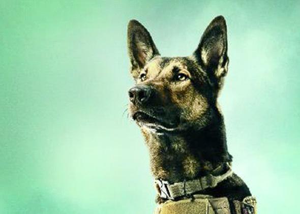 How Max gets war dogs wrong: actual military canines are way more