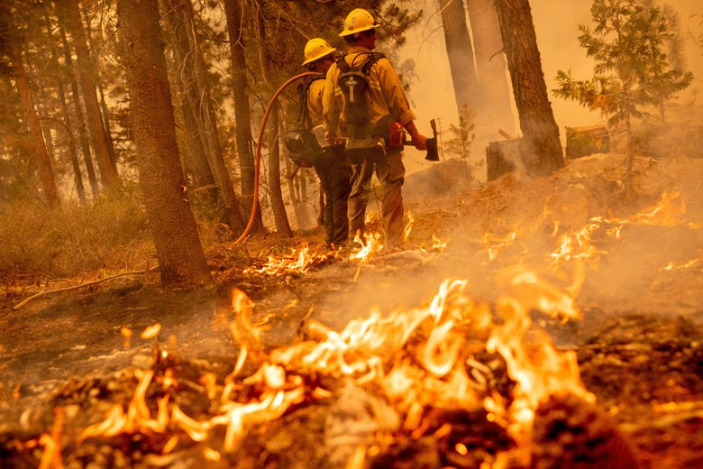 Firefighters work to keep flames from the Caldor fire from jumping highway 50 in Meyers, California on August 31, 2021.