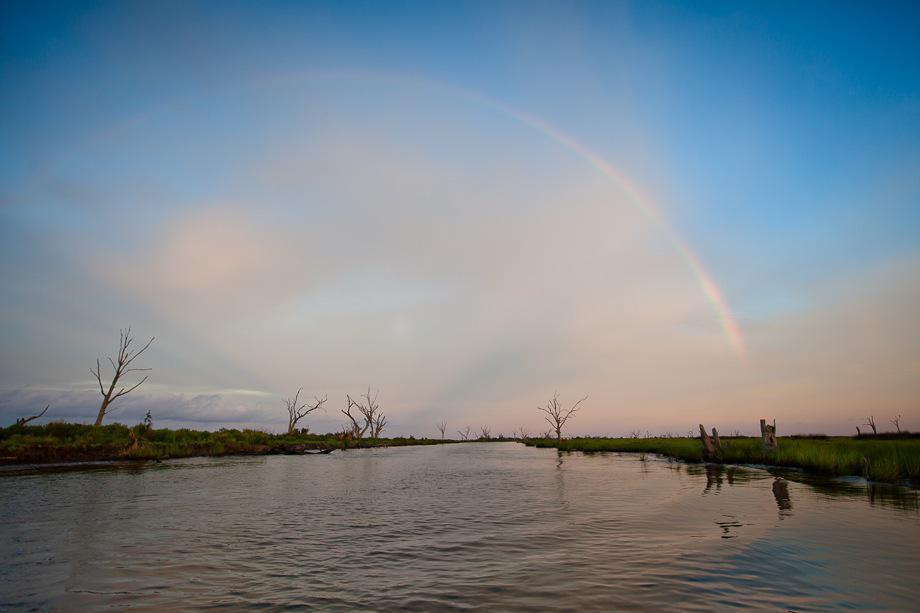 Rainbow in the marsh at Bayou Point-aux-Chien.