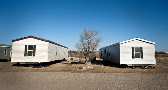 A tree grows between two new single wide mobile homes in Williston, North Dakota, in February.
