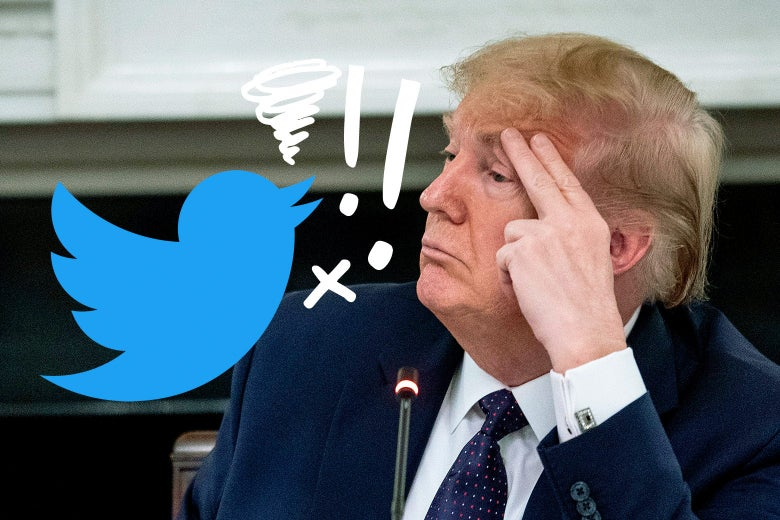 Donald Trump getting cursed out by a Twitter bird.