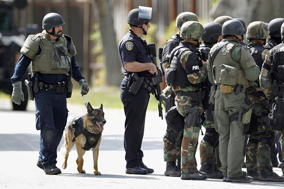 Police officers and a police dog prepare to search a suburban street during a manhunt in Sunnyvale, California, October 5, 2011.