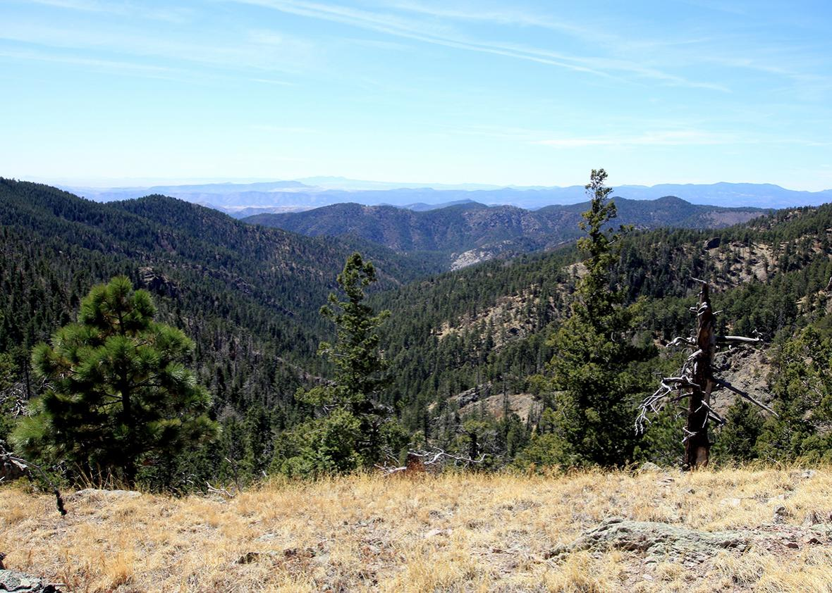Gila National Forest in New Mexico.