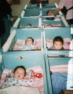 Chang Yulu, in first crib, left row, is the baby found in Xiaxi.