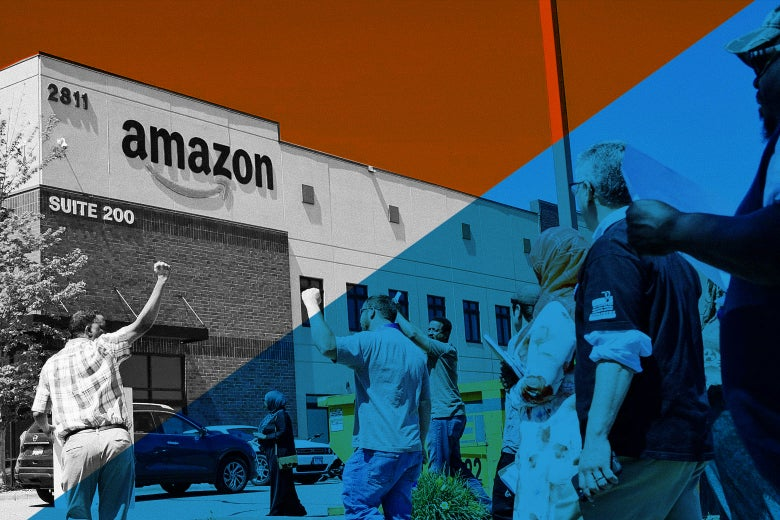 Bringing Amazon to the Table