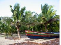 A fishing boat, surrounded by the day's catch, on a beach in Kerala