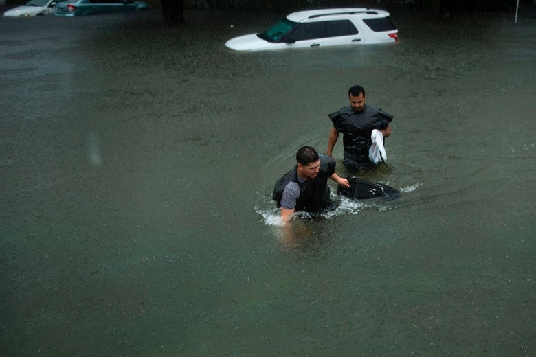 People in trash bags walk through floodwater.