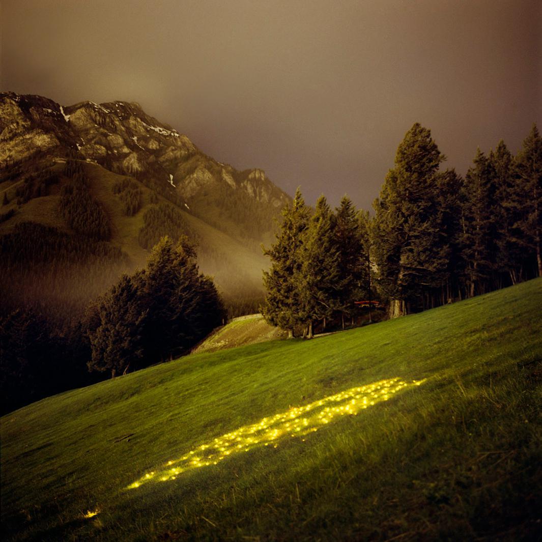 Norquay (Yellow), 2007