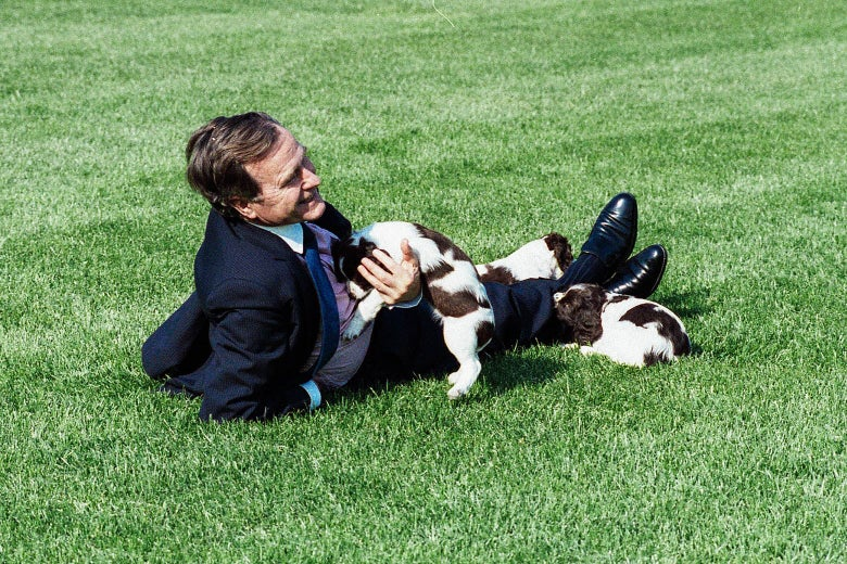 George H.W. Bush, in a blue suit, stretched out on the White House lawn playing with Millie and two puppies.