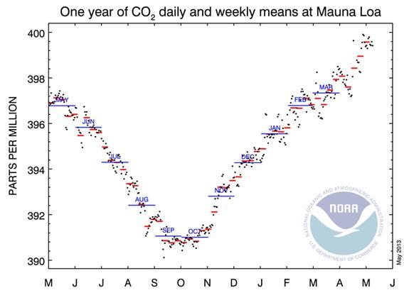 CO2 levels for the past year