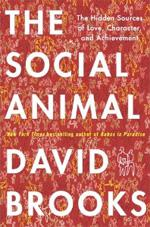 The Social Animal by David Brooks.