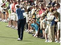 Tiger Woods. Click image to expand.