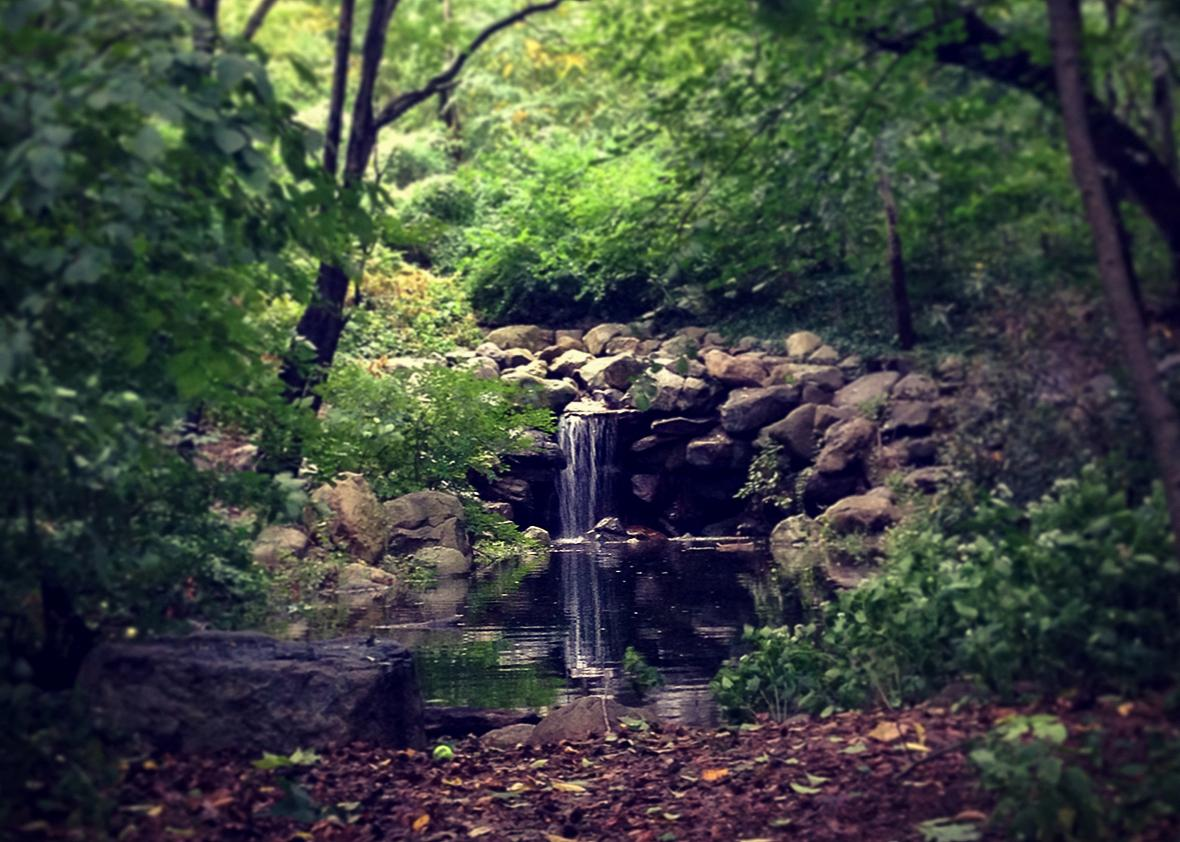 Waterfall in Prospect Park, Brooklyn, NY, Oct. 3, 2015.