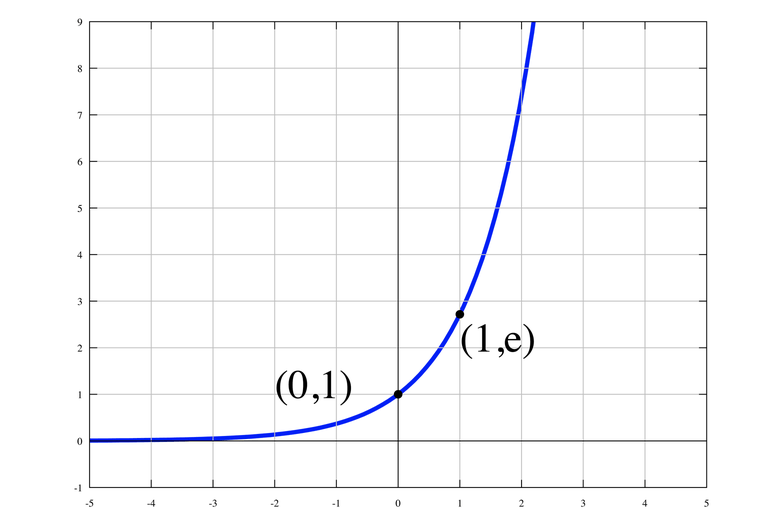 A graph of the function y=e^x.